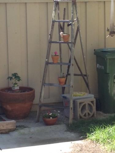 current ladder