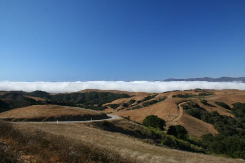 prefumo canyon road and fog